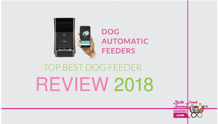 dog automatic feeders--automatic-dog-feeders-dog-feeders--best-automatic-dog-feeder
