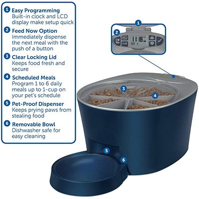 dog automatic feeders petsafe 6 meal feeder